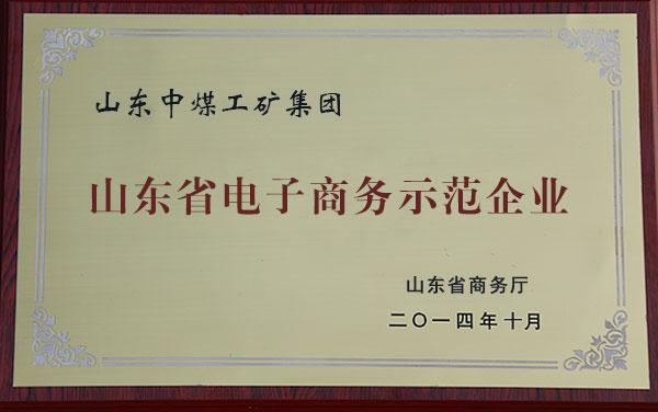 山东省电子商务示范企业