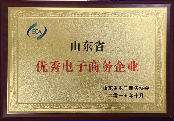 山东省优秀电子商务企业