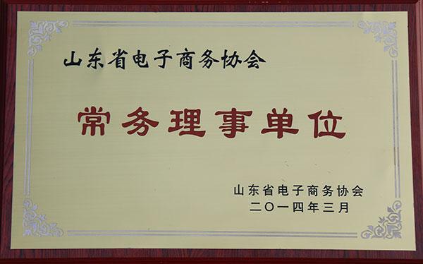 山东省电子商务协会常务理事单位