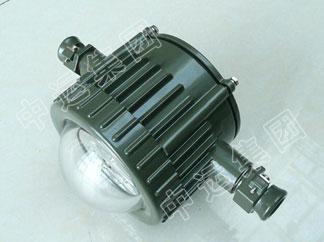 DGS12/127L(A)矿用隔爆型LED巷道灯