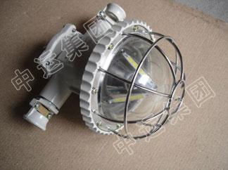DGS20-30/127L礦用隔爆型LED巷道燈